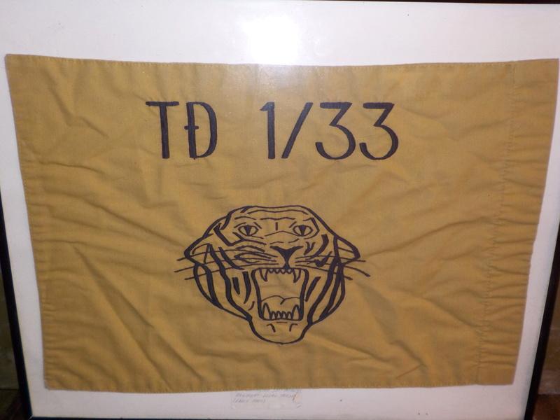 ARVN Battalion flag Dscn0651