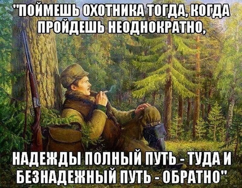 Зарисовки из жизни охотника Imager10