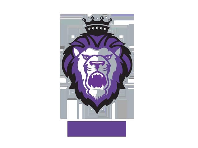 Smashtastic T20 League - Teams  Royals10