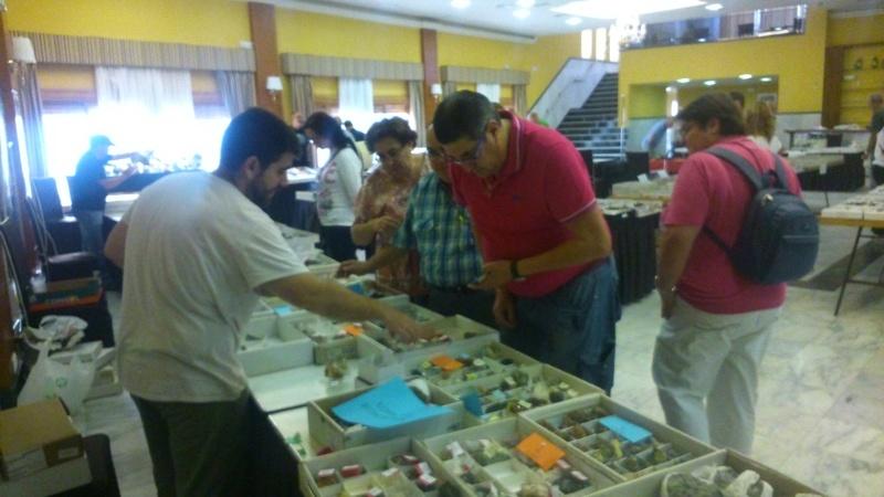 6ª Mesa de Minerales de Extremadura (Santa Marta - Badajoz) - Página 3 1eln810
