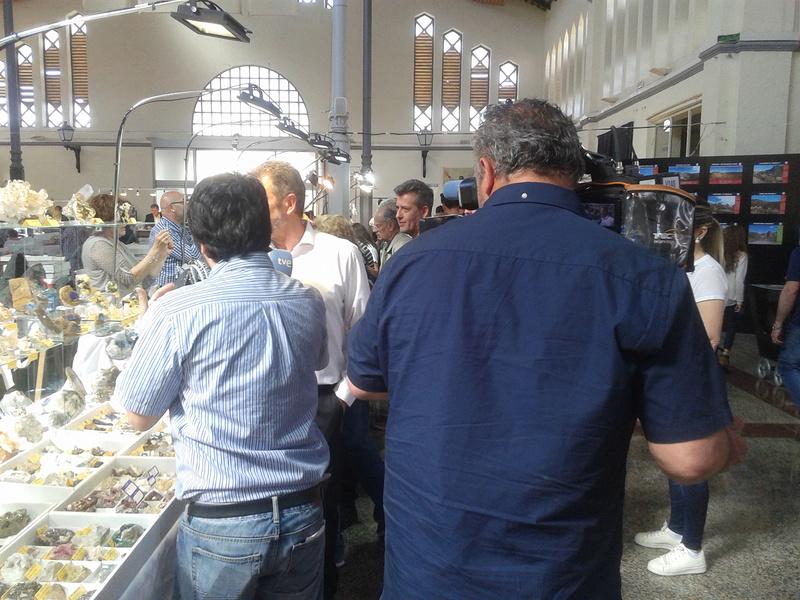 XXI Feria de Minerales y Fósiles de La Unión  20170437