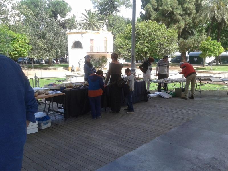 VII Mesa mineralogica ciudad de Córdoba - Página 2 20170512