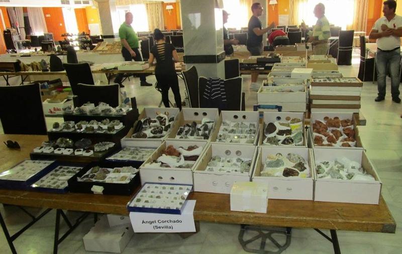 6ª Mesa de Minerales de Extremadura (Santa Marta - Badajoz) - Página 3 2d9oge10