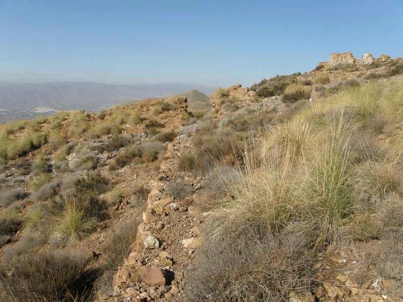 """Mina """"El descuido"""" Sierra de Alhamilla, Pechina (Almería) C10"""