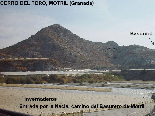 MINA PEPITA, CERRO DEL TORO, MOTRIL (GRANADA) Cerrod11