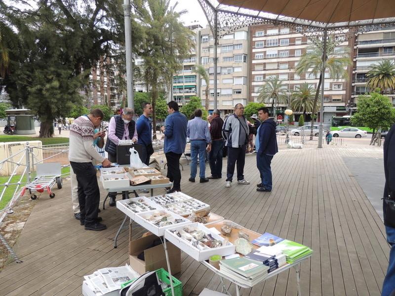 VII Mesa mineralogica ciudad de Córdoba - Página 2 Dscn9915