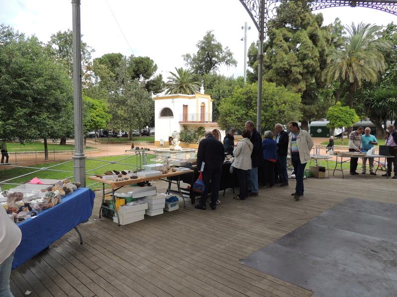 VII Mesa mineralogica ciudad de Córdoba - Página 2 Dscn9922