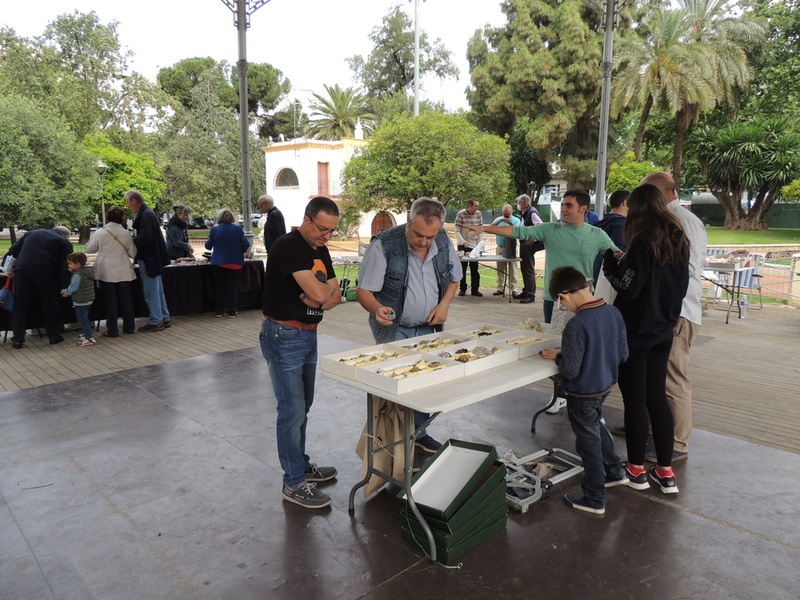 VII Mesa mineralogica ciudad de Córdoba - Página 2 Dscn9927