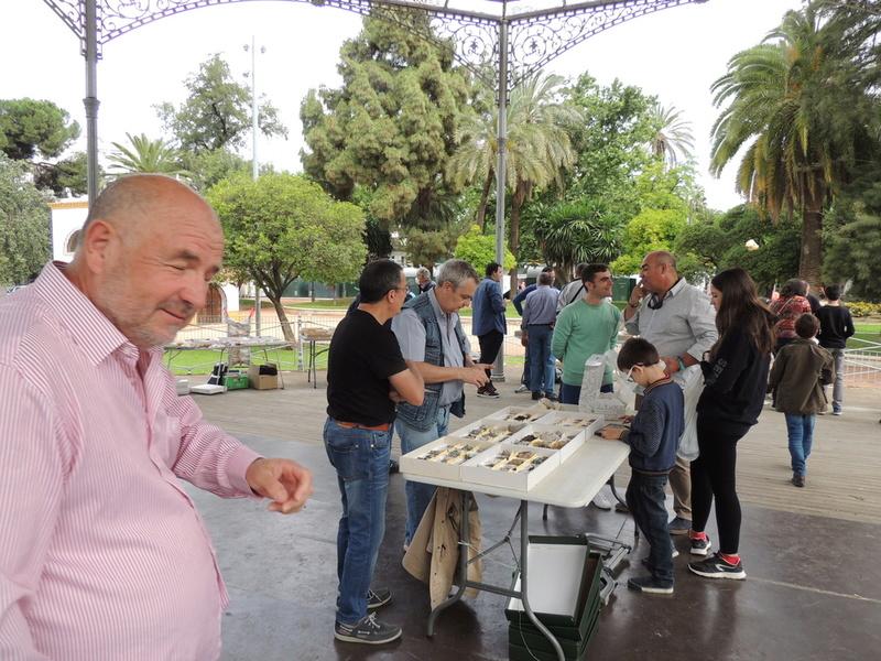 VII Mesa mineralogica ciudad de Córdoba - Página 2 Dscn9928