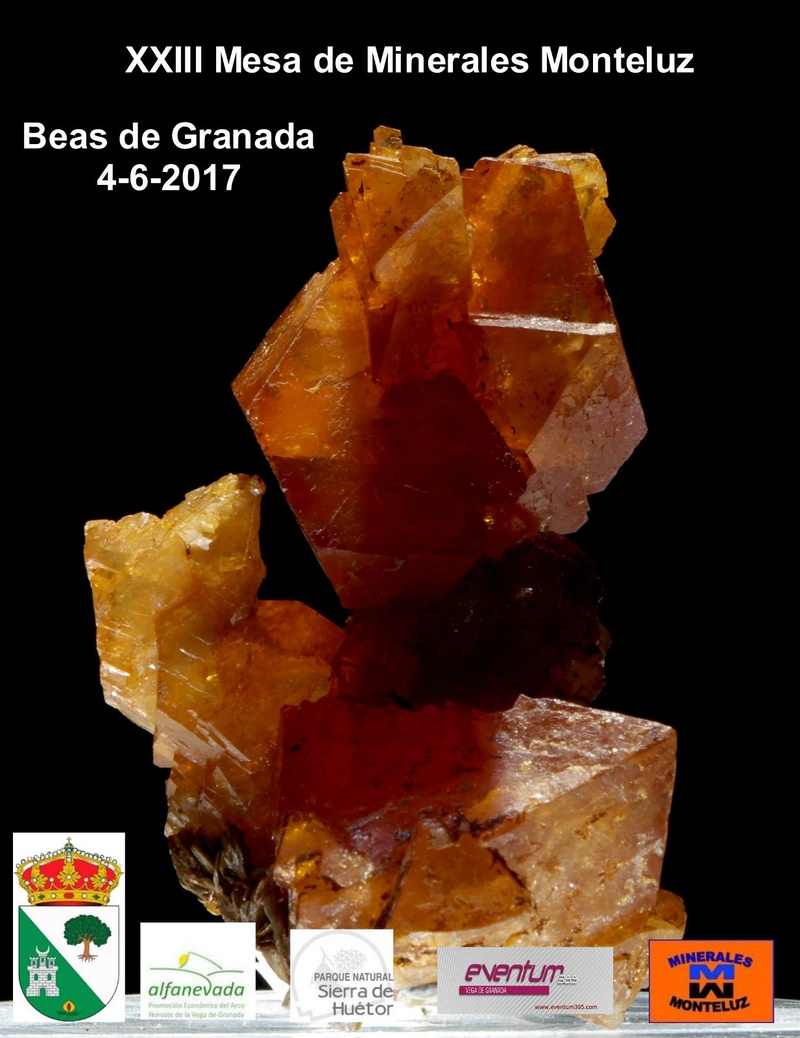 23 ª Mesa de Minerales Monteluz.  Img-2081