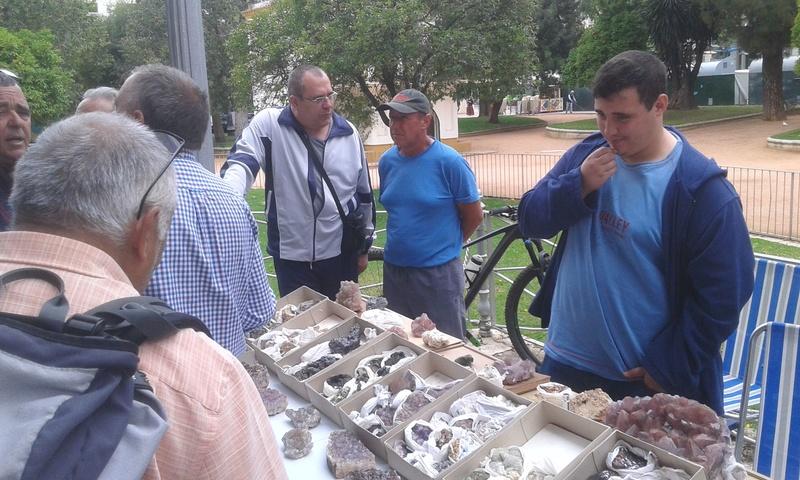 VII Mesa mineralogica ciudad de Córdoba - Página 2 Img-2084