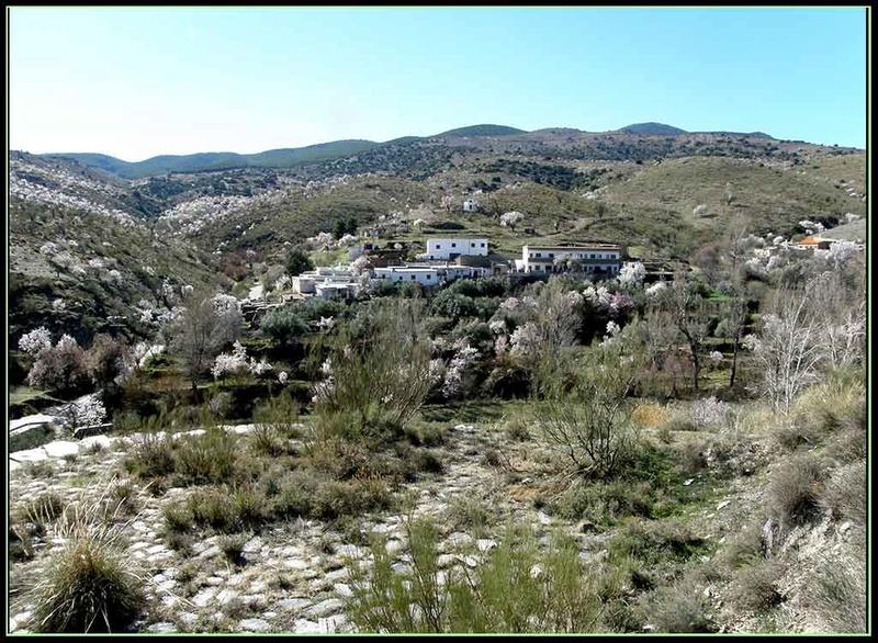 LA HEREDAD (FIÑANA), CTRA. DE ESCULLAR (ABLA), ALMERIA P3082015