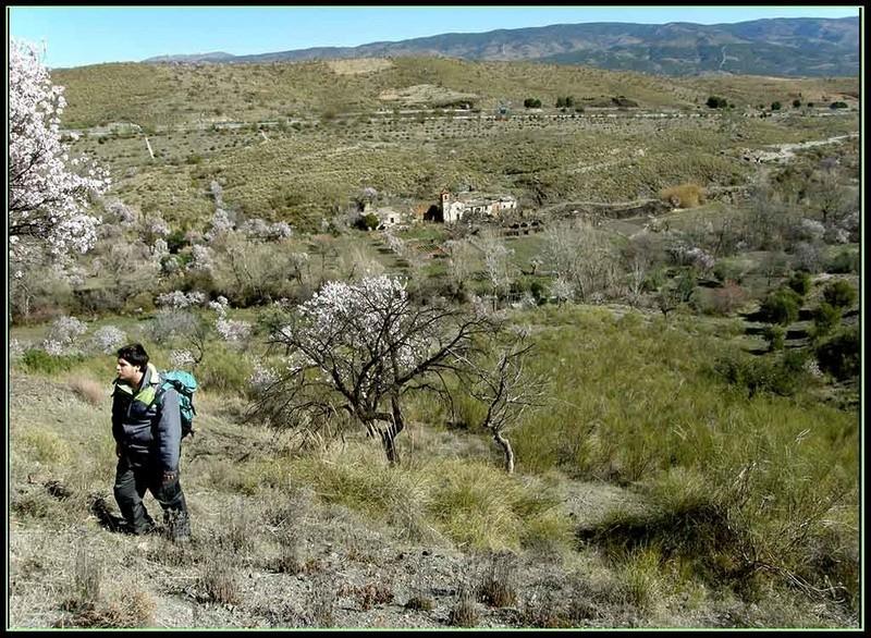 LA HEREDAD (FIÑANA), CTRA. DE ESCULLAR (ABLA), ALMERIA P3082019
