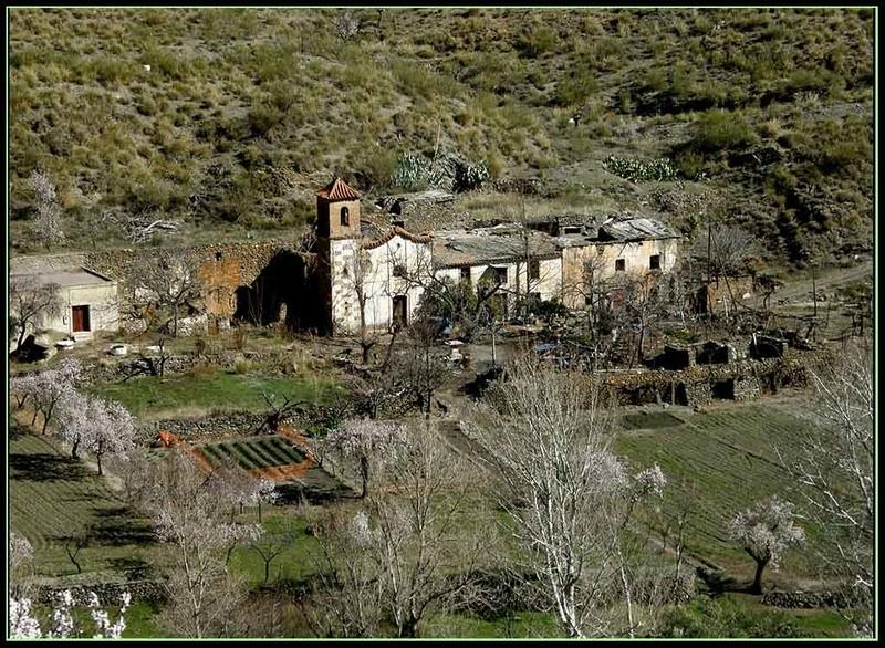 LA HEREDAD (FIÑANA), CTRA. DE ESCULLAR (ABLA), ALMERIA P3082021
