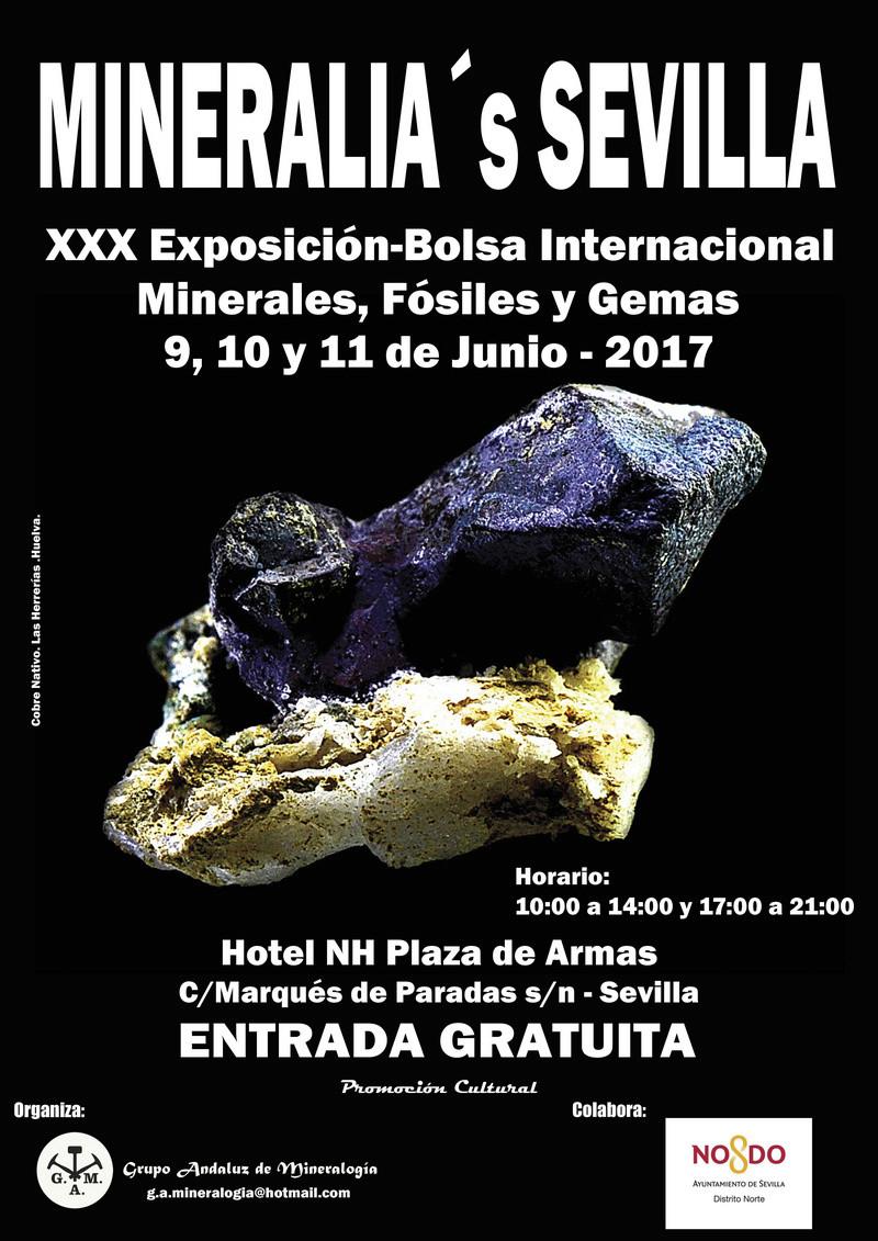 XXX Exposición-Bolsa Internacional Minerales, Fósiles y Gemas 2017 - MINERALIA SEVILLA Sevill10