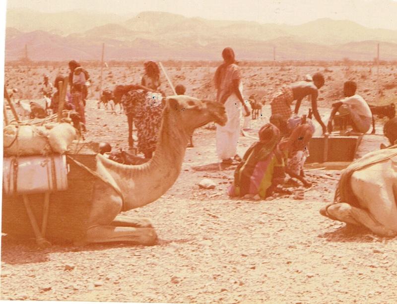 [Campagne] DJIBOUTI - TOME 1 - Page 4 Dji1111