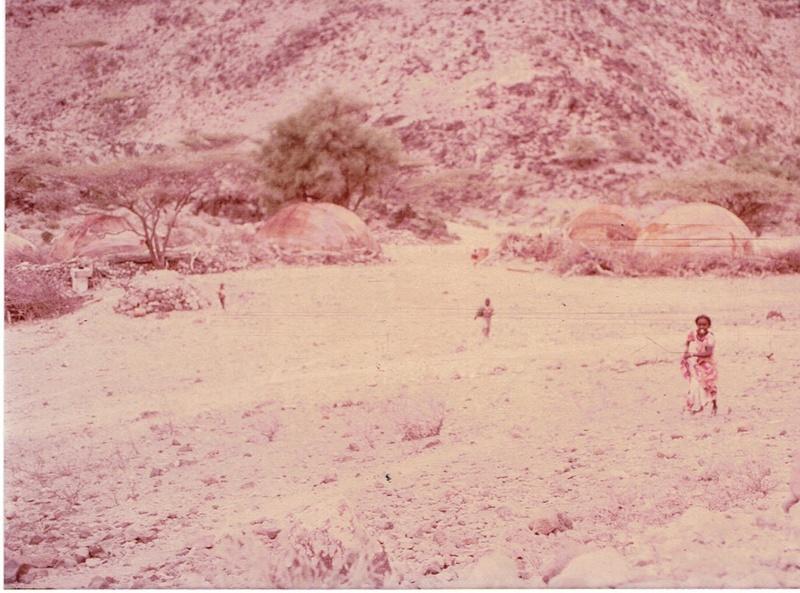 [Campagne] DJIBOUTI - TOME 1 - Page 4 Dji2910