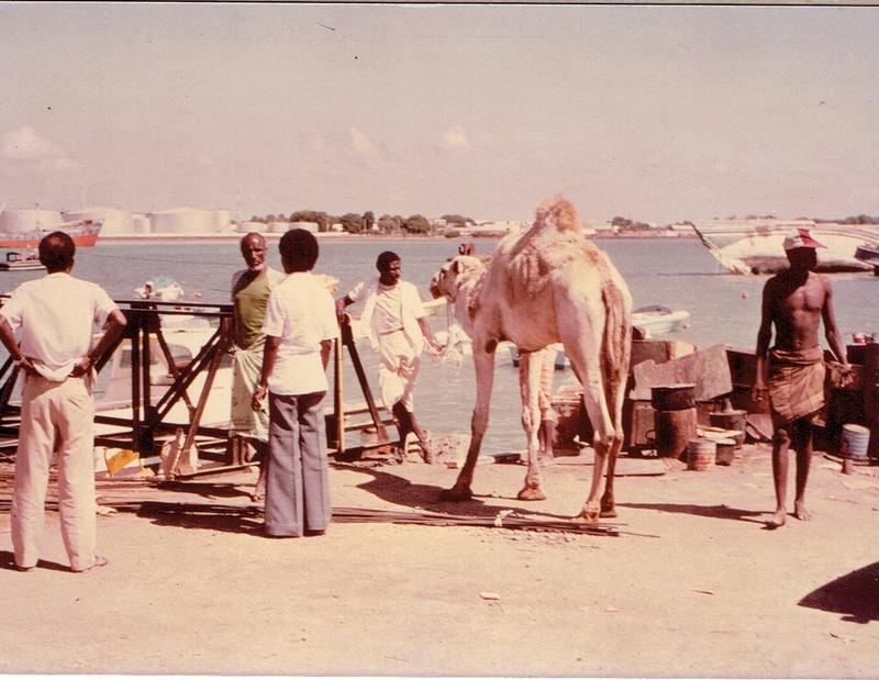 [Campagne] DJIBOUTI - TOME 1 - Page 4 Dji4410