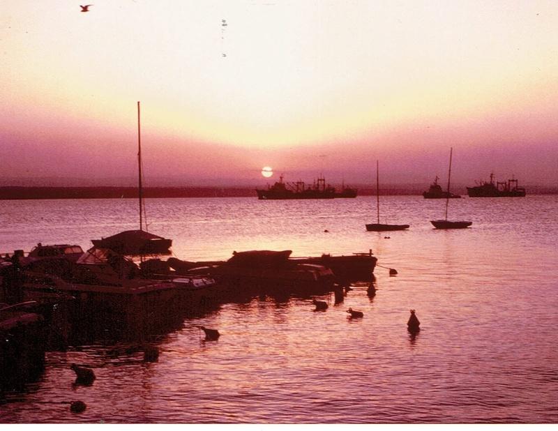 [Campagne] DJIBOUTI - TOME 1 - Page 4 Dji4510