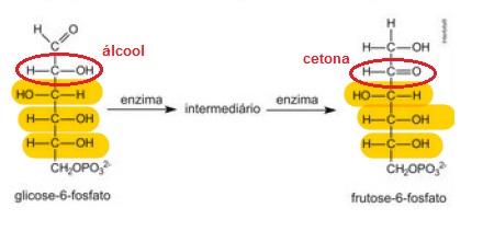 Síntese organica Glicol10