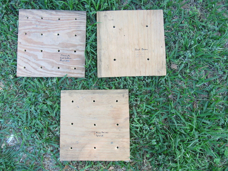 What do you think about this Planting Template for SFG? - Page 2 Img_0411