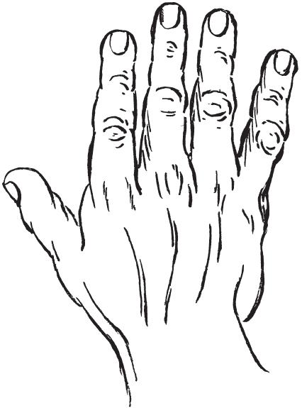 7 типов руки I_00110