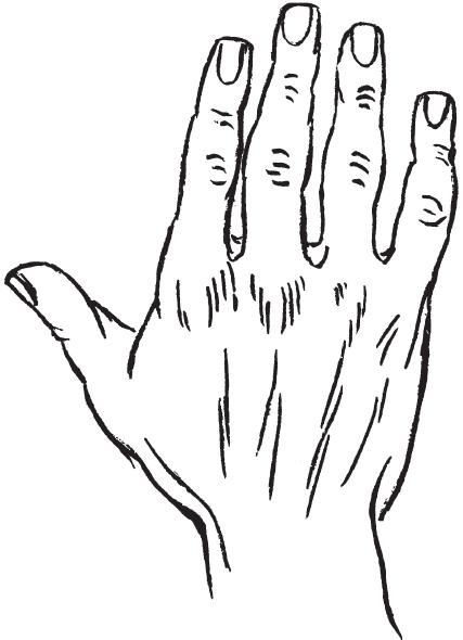 7 типов руки I_00210