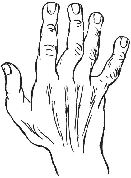 7 типов руки I_00310