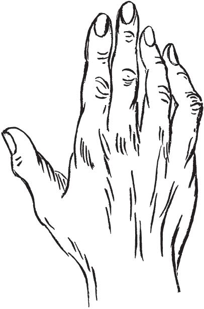 7 типов руки I_00410