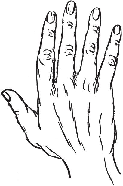 7 типов руки I_00510