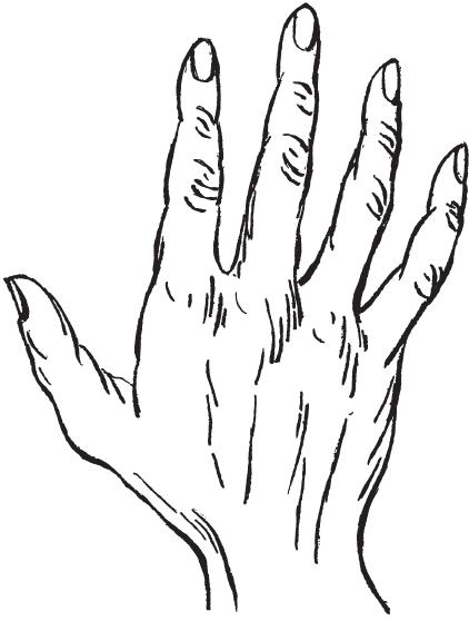 7 типов руки I_00610