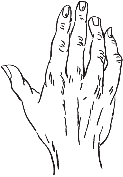 7 типов руки I_00710