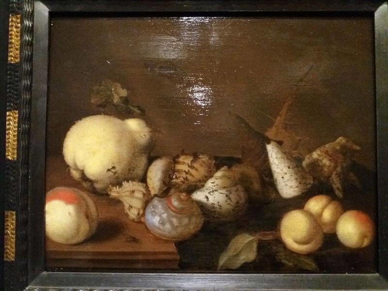 Coquillages et peinture 17269811