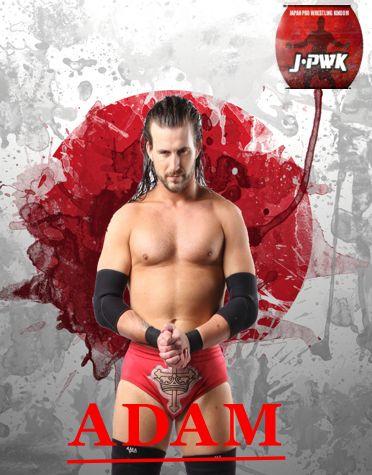 Nuevas cards oficales Adam10