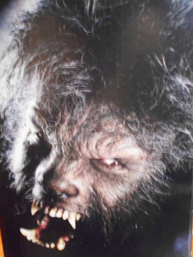 My Wolfman Figure From The Last Movie.... Left_s10