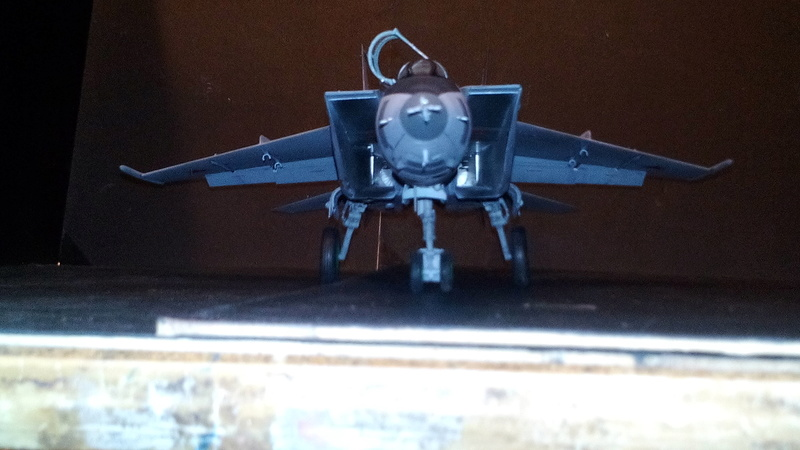 Mig-25 RBT 1/48 ICM Img_2049