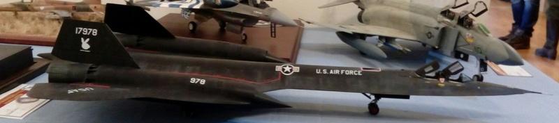 SR-71 Blackbird 1/48 Italeri/Testors Img_2055