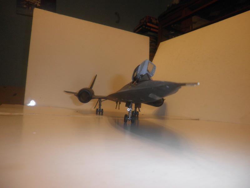 SR-71 Blackbird 1/48 Italeri/Testors P1010036