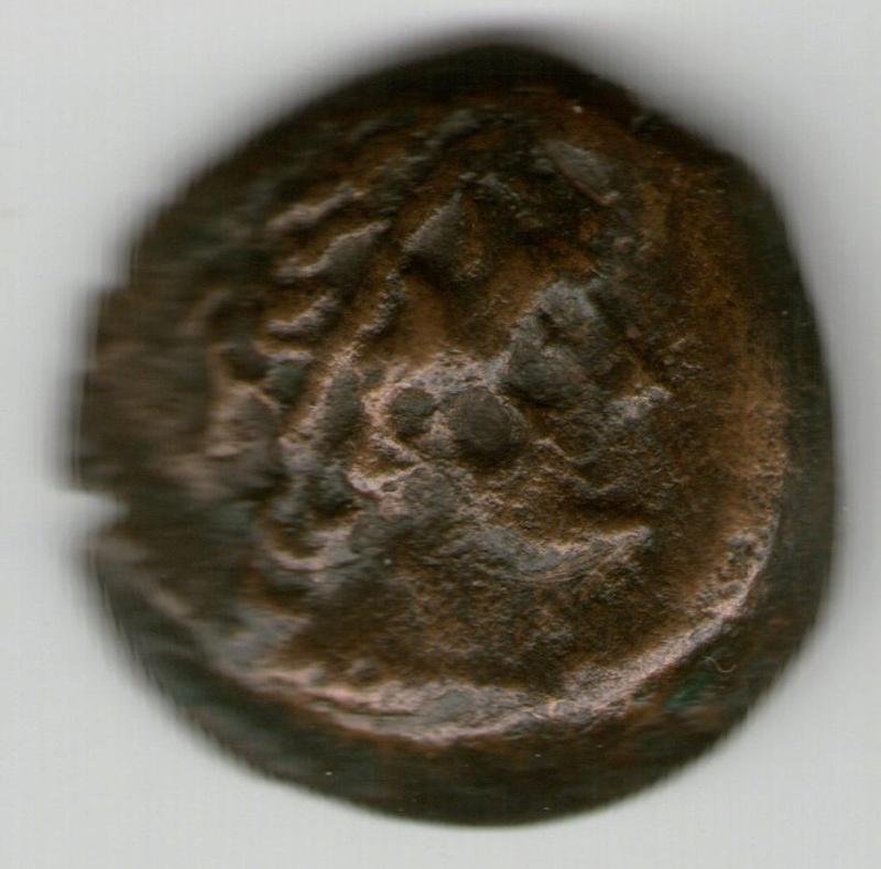 AE 15 de Ptolomeo V Smg_7614