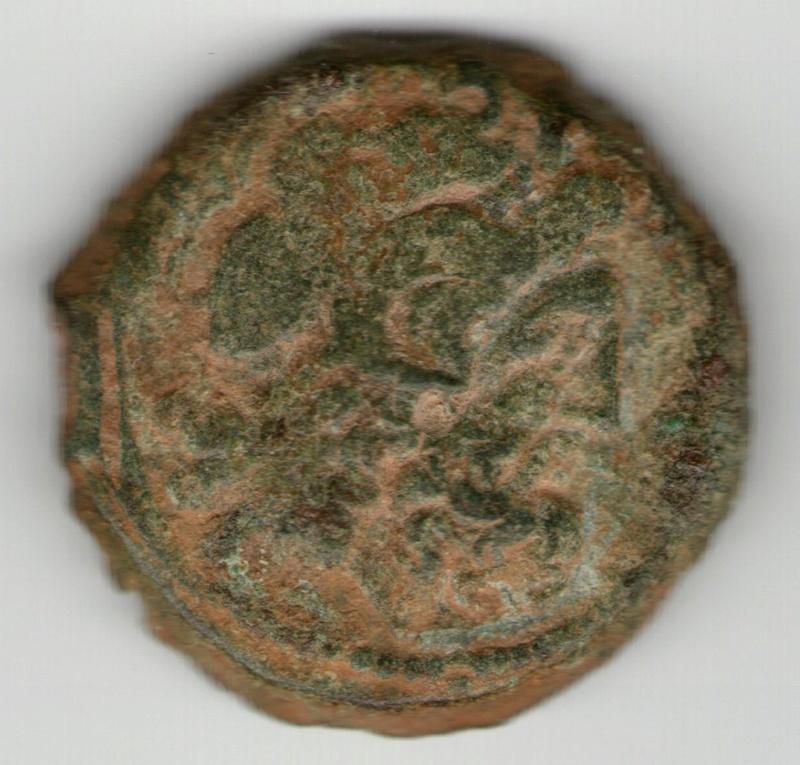 Ptolemo VI AE 18 Smg_7616