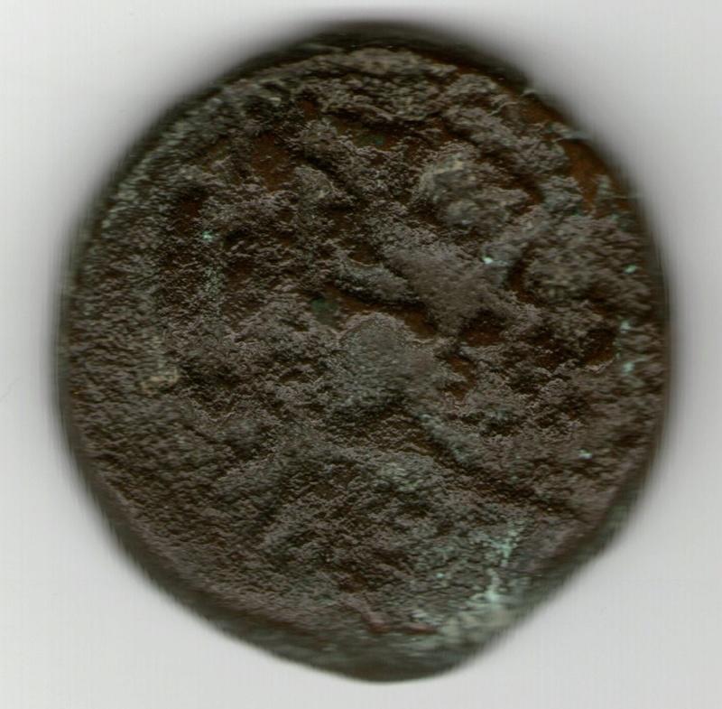 Ptolemo VIII Evergetes II Smg_7618