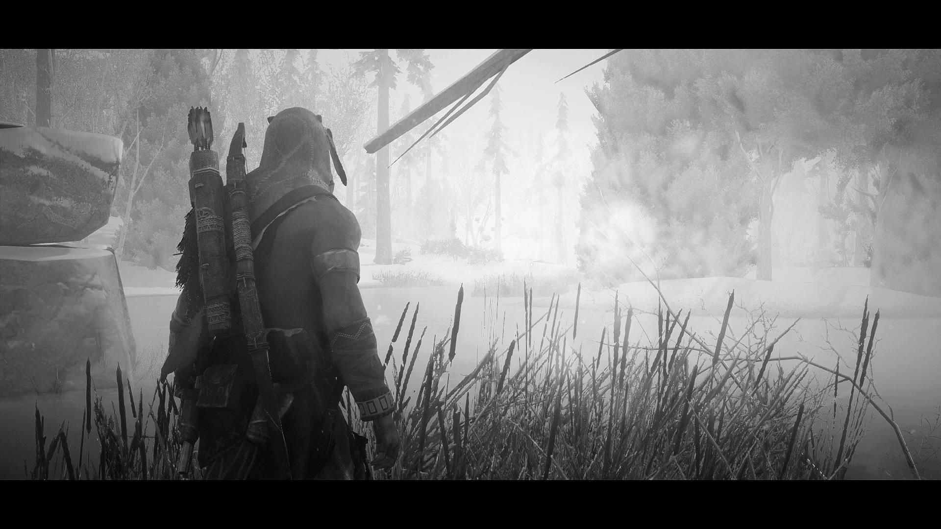 [CONTEST] Assassin's Creed Screenshots Winter11