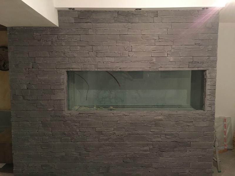 Création aquarium eau douce 1000l  Img_2110