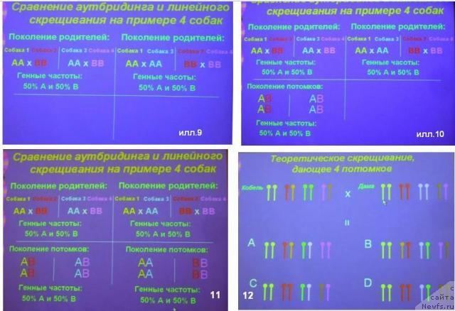 Контроль наследственных заболеваний у собак Control of Canine Genetic Disease Н.Масленникова 2314310