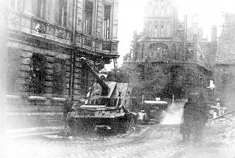 ARK Models 1/35 Pak 43/3 Waffentrager Waffen12