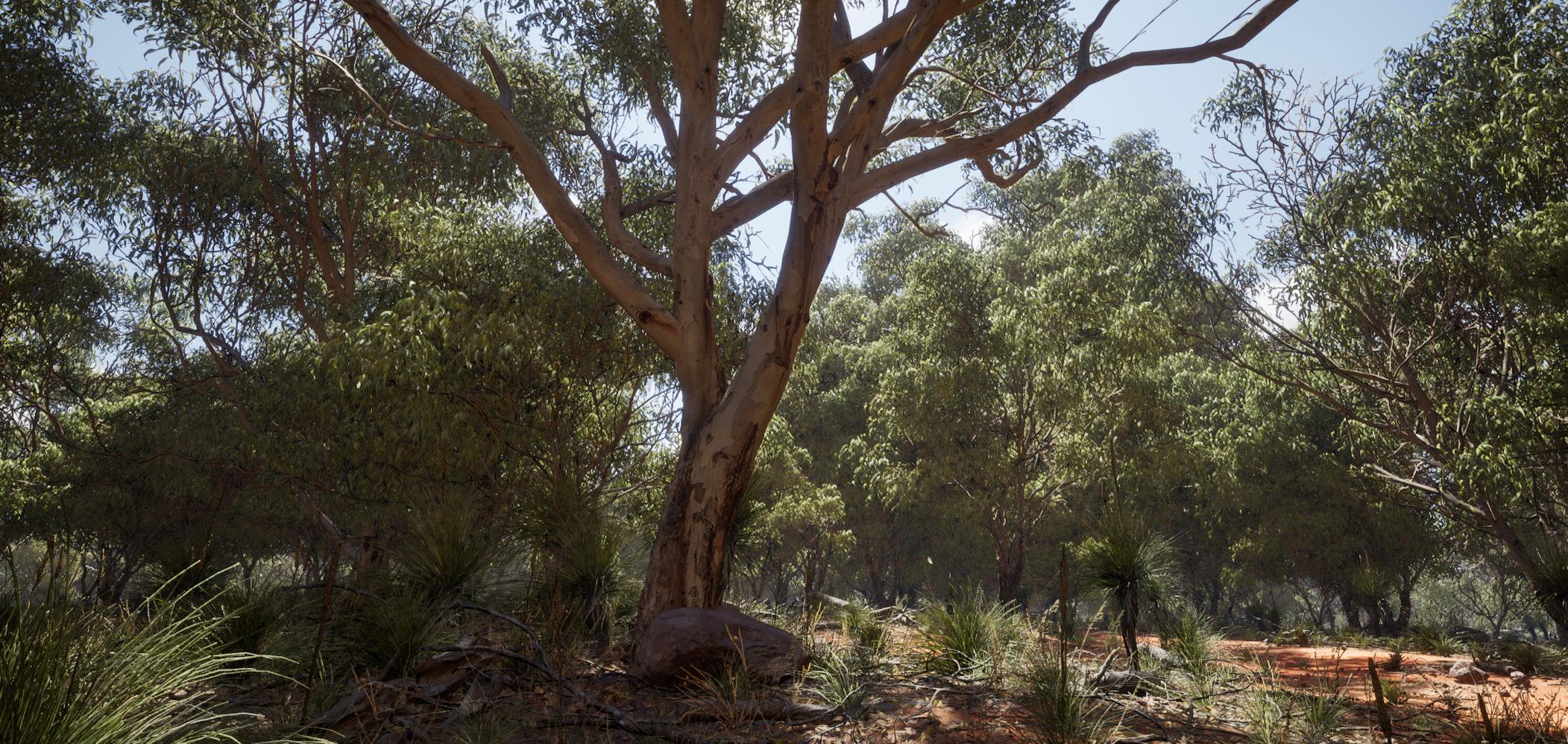[ UNREAL ENGINE ] Asset free - Rural Australia 0210