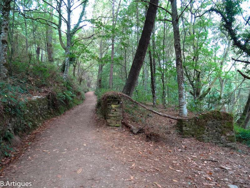 octubre - León - Santiago Octubre 2016 Camino68