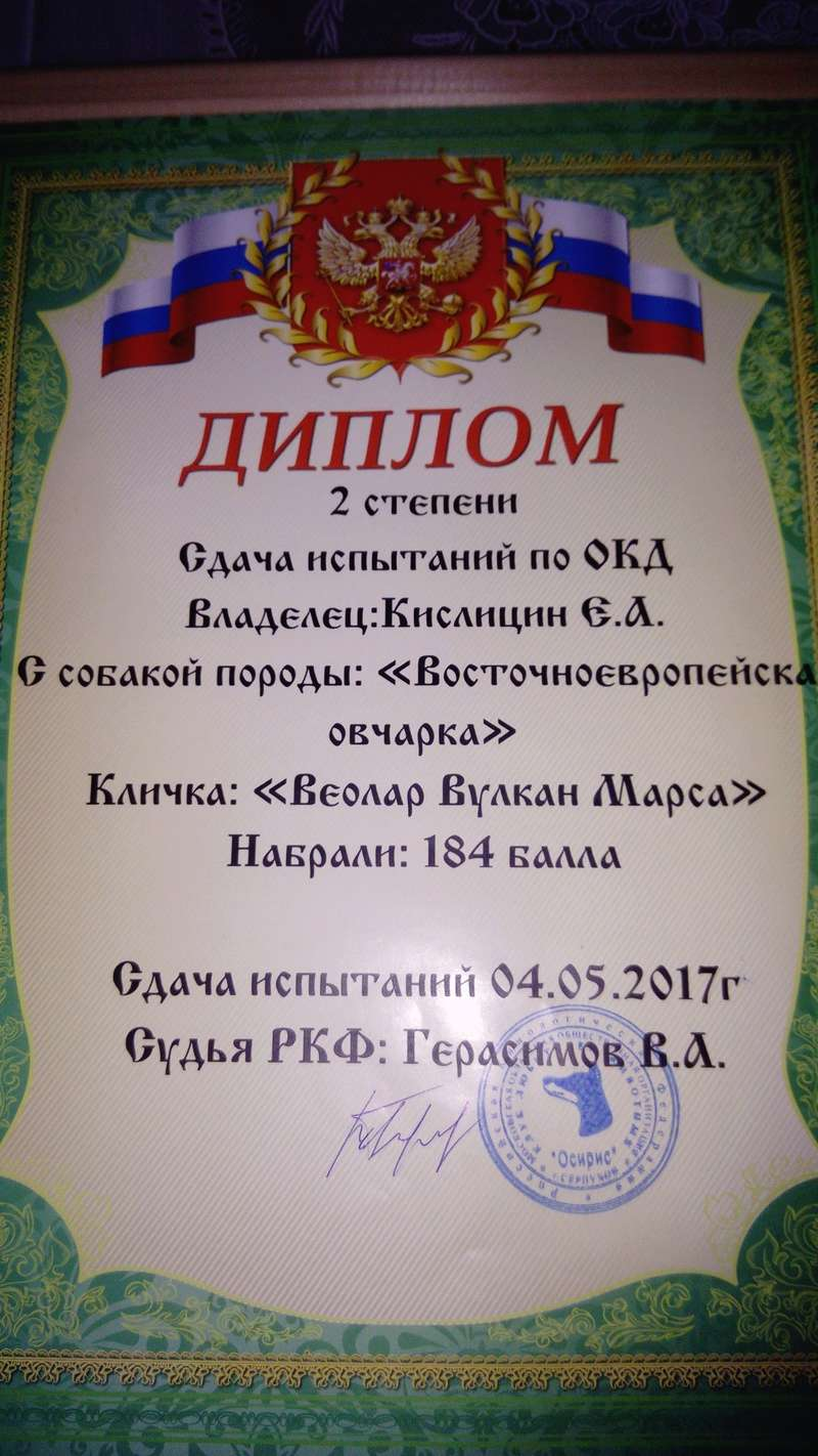 ВОСТОЧНО-ЕВРОПЕЙСКАЯ ОВЧАРКА ВЕОЛАР ВУЛКАН МАРСА - Страница 3 Eai10
