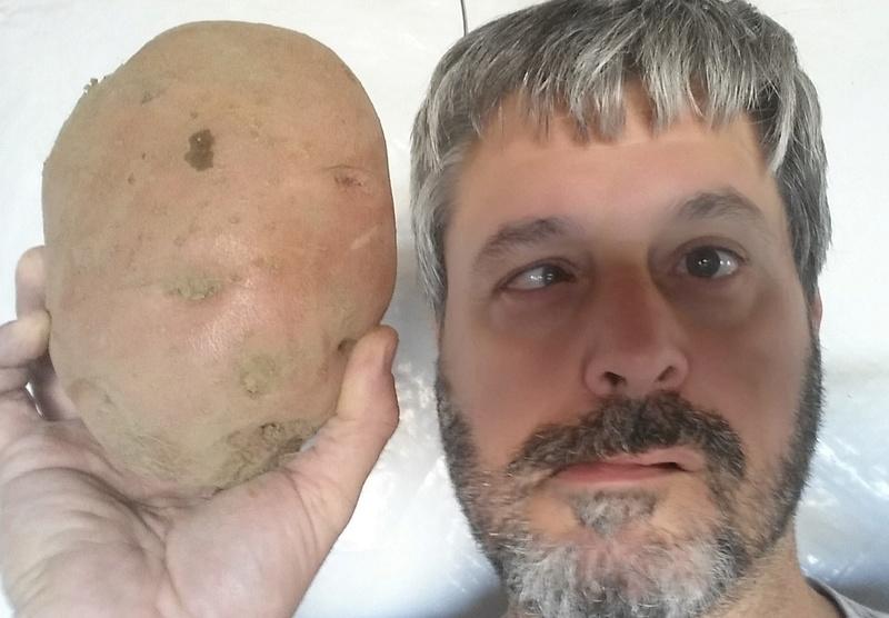 Potato growing Mark_m12