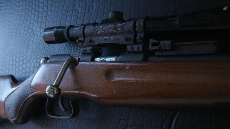 Carabine Dsc07010